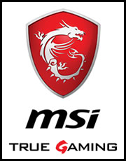 MSI true gamming